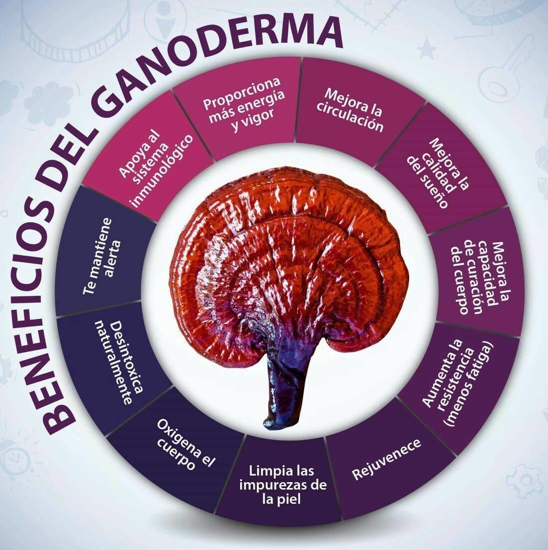 Beneficios del Ganoderma